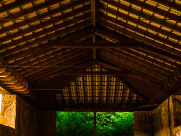 Insectes xylophages et traitement bois